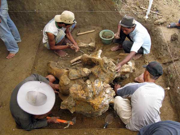 Mengunjungi Sejarah Purba di Patiayam