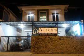 Alice's Kost
